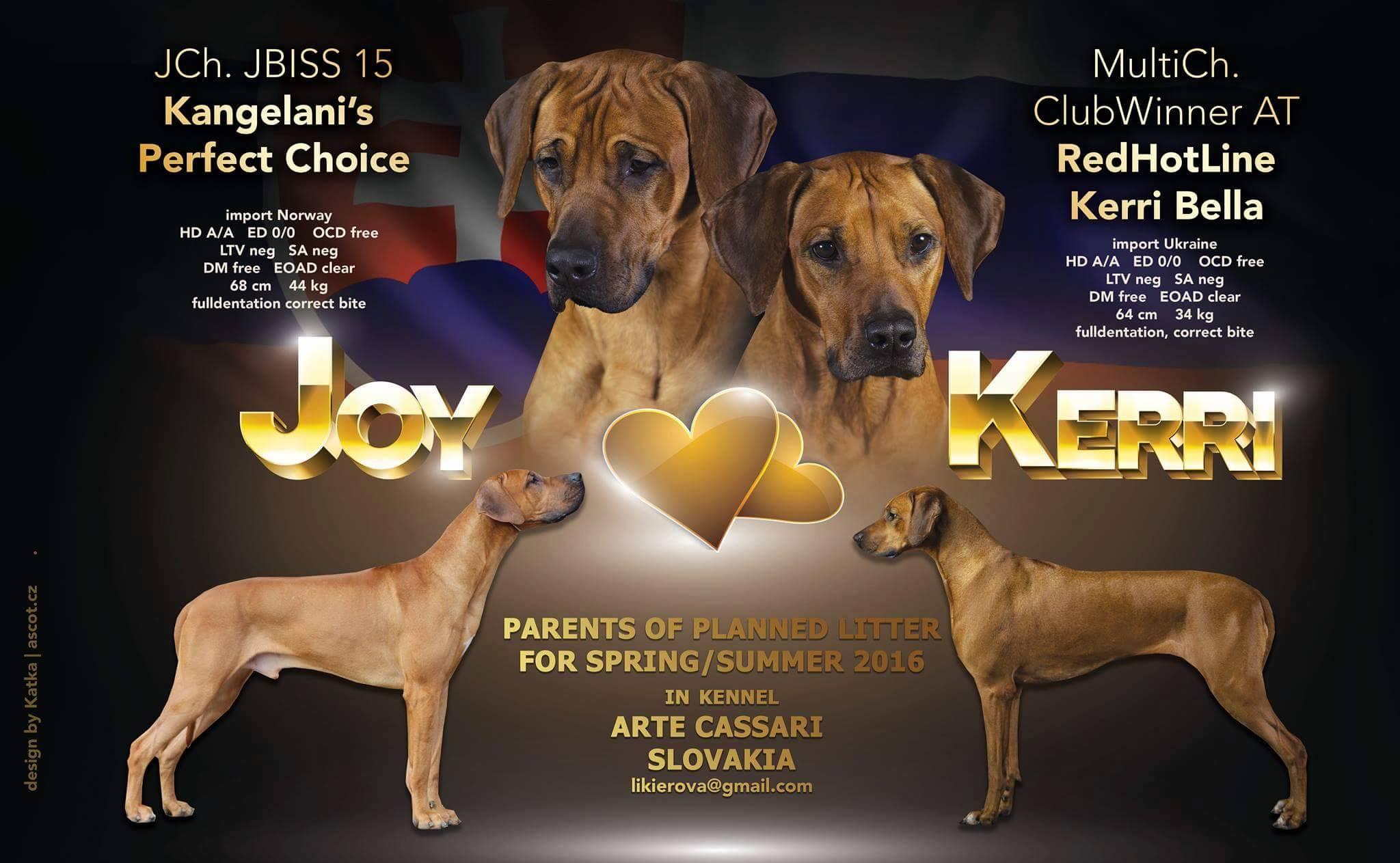 Kery a Joy
